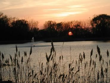 A Romeoville Park at Sunset